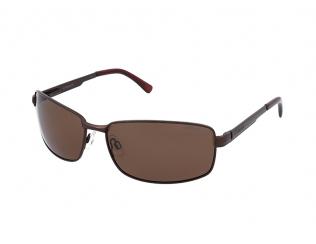 Moška sončna očala - Polaroid P4416 09Q/PK