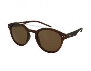 Panto sončna očala - Polaroid PLD 6030/S N9P/SP