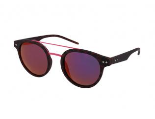 Panto sončna očala - Polaroid PLD 6031/S N9P/AI